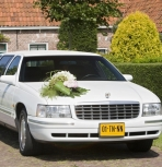 Cadillac Stretched Limousine (wit)